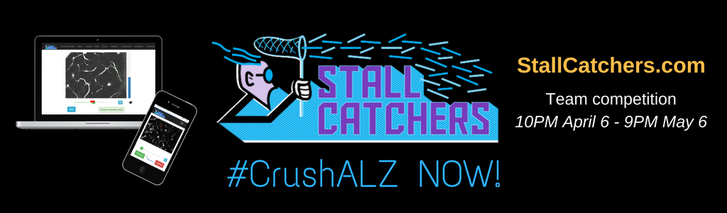 #CrushALZ team competition begins NOW!