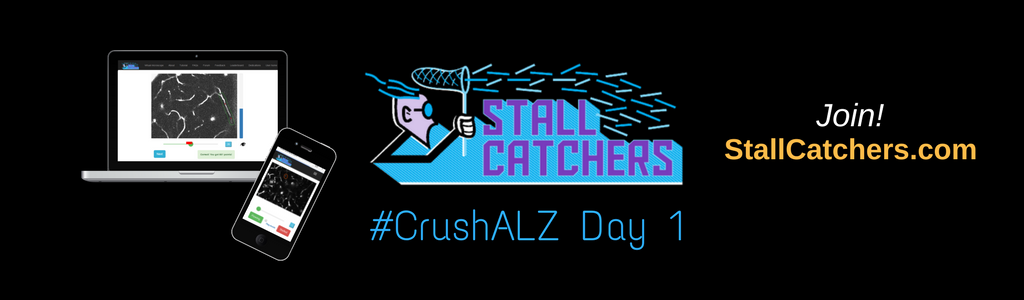 #CrushALZ Daily: Record breaking Day 1!