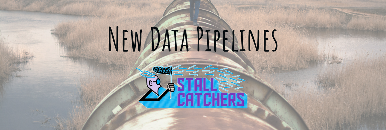 Behind the scenes: developing new data pipelines in Stall Catchers