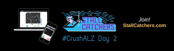 #CrushALZ Daily: Changing leaderboards on Day 2!