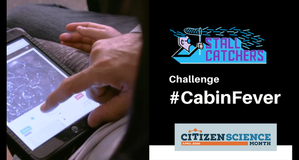 #CabinFever challenge - with a special twist for schools!