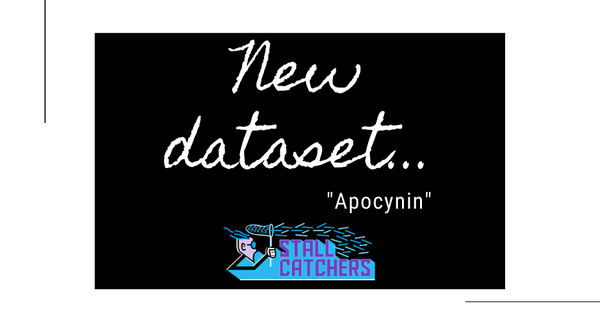 "New Stall Catchers dataset: ""Apocynin"" 🧪"